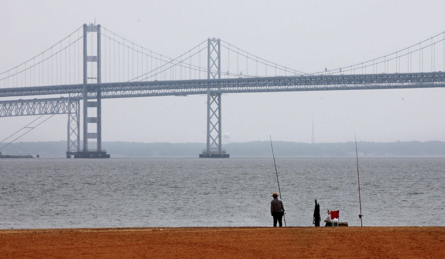 FILE - In this Wednesday, May 12, 2010, file photo, a man looks out over the Chesapeake Bay, with the Bay Bridge in the background, at Sandy Point State Park in Annapolis, Md. A federal court is deciding whether the Obama administration's plan to clean up the Chesapeake Bay watershed oversteps legal bounds, an election-year appeal by farmers and 21 attorneys general that could shape future U.S environmental policy. (AP Photo/Jacquelyn Martin, File)