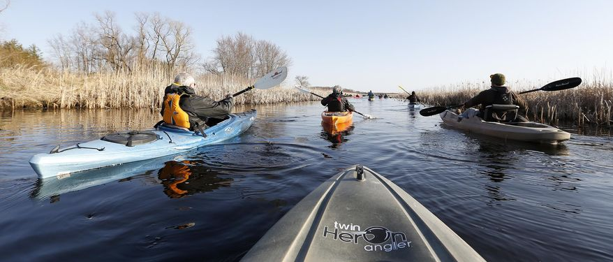 ADVANCE FOR SATURDAY, MAY 3 AND THEREAFTER  - In a Tuesday, April 22, 2014 photo, kayakers paddle out for a tour of Sweet Marsh near Tripoli, Iowa. The 3,000-acre wildlife area contains multiple habitats ideal for a variety of species.  (AP Photo/Waterloo Courier, Brandon Pollock)
