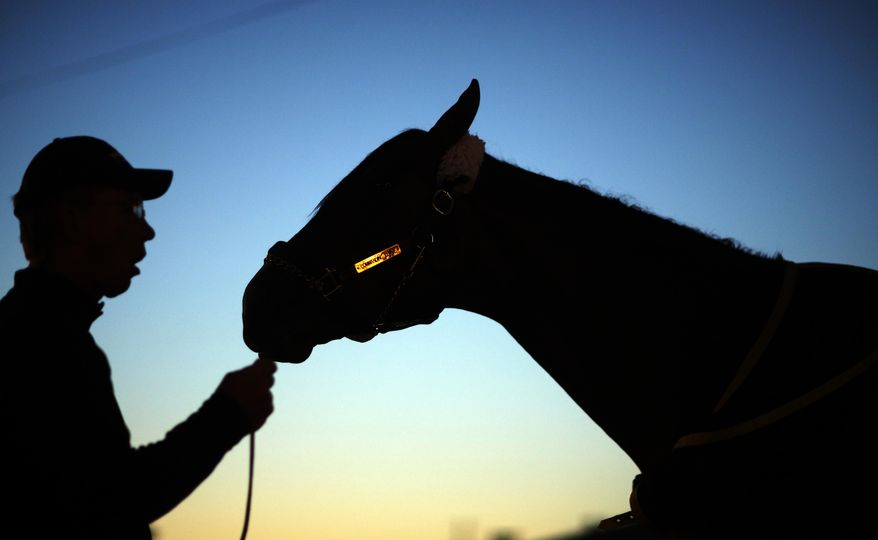 Dan Queenan holds Kentucky Derby entrant Commanding Curve after a morning workout at Churchill Downs Friday, May 2, 2014, in Louisville, Ky. (AP Photo/David Goldman)