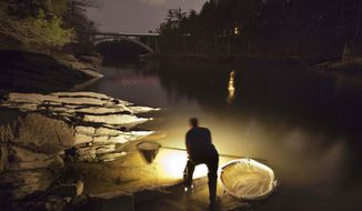 FILE - In this March 23, 2012 file photo, Bruce Steeves uses a lantern to look for young eels known as elvers on a river in southern Maine. The state's elver season is off to a slow start, with the catch only around half of what it was last year. State regulators say a resurgence in foreign markets may have cut back demand for Maine's baby eels.  (AP Photo/Robert F. Bukaty, File)