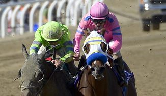 Ria Antonia, left, with jockey Javier Castellano aboard wins the Breeders' Cup Juvenile Fillies horse race after getting bumped by jockey Gary Stevens riding She's a Tiger at Santa Anita Park Saturday, Nov. 2, 2013, in Arcadia, Calif. (AP Photo/Mark J. Terrill)