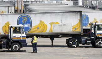 In this Aug. 28, 2008, photo, Chiquita trucks are evacuated out of the state port in Gulfport, Miss., in advance of Hurricane Gustav. Chiquita Brands International Inc. is returning to New Orleans from Mississippi after nearly 40 years, bringing up to 350 new jobs. Chiquita, then called United Brands, left New Orleans for Gulfport in the mid-1970s after more than 70 years in New Orleans. (AP Photo/The Sun Herald, John Fitzhugh)