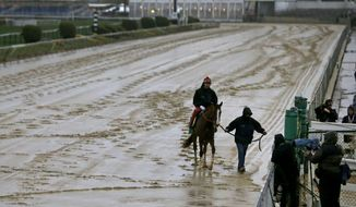 A horse is led off of the track as rain falls at Pimlico Race Course in Baltimore, Friday, May 16, 2014. The Preakness Stakes horse race is scheduled to take place on Saturday, May 17. (AP Photo/Patrick Semansky)