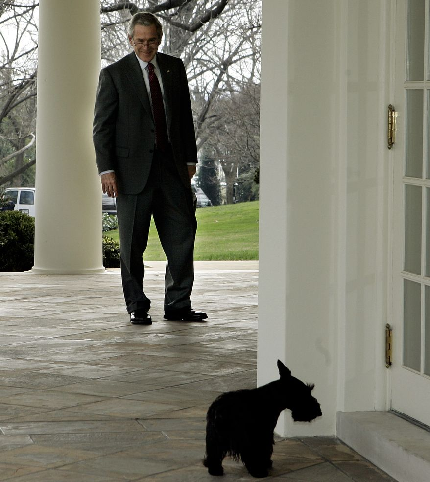 President Bush calls his dog Miss Beazley into the Oval Office of the White House in Washington, Wednesday, Jan. 24, 2007, prior to meeting with Gen. Dan McNeill, incoming commander for NATO's International Security Assistance Force in Afghanistan, not shown.  (AP Photo/Ron Edmonds)