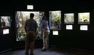 Zoo employees at the Houston Zoo's new bug house get their first look at the exhibits Friday, May 23, 2014, in Houston. The Bug House, opening this weekend, has 30 species of native and exotic insects on display. (AP Photo/Pat Sullivan) ** FILE **