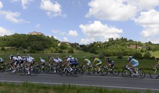 Cyclists pedal in the countryside during the 13th stage of the Giro d'Italia, Tour of Italy cycling race, from Fossano to Rivarolo Canavese, Italy, Friday, May 23, 2014.  (AP Photo/Fabio Ferrari)