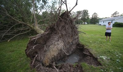 Josh Thompson stands near a tree that fell in the backyard after severe weather passed through the area, Thursday, May 22, 2014, in Wilmington, Del. (AP Photo/The Wilmington News-Journal, William Bretzger) NO SALES.