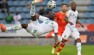 Cameroon's Webo Achille scores during their friendly soccer match against Macedonia in Kufstein, Austrian province of Tyrol, on Monday, May 26, 2014. (AP Photo/Kerstin Joensson)