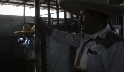 In this May 4, 2014 photo, farmworker Orfil Agredano, left, drinks tequila as he checks on his horse with Fernando Rodriguez in Mendota, Calif. In the small farming town many farmworkers including Agredano and Rodriguez live in fear of losing their jobs as California is experiencing extreme drought conditions. (AP Photo/Jae C. Hong)