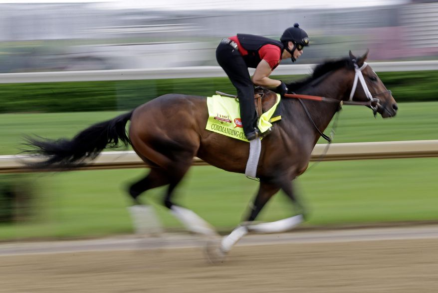 ADVANCE FOR WEEKEND EDITIONS, JUNE 1-2 - FILE - In this April 29, 2014 file photo, exercise rider Emerson Chavez takes Kentucky Derby hopeful Commanding Curve for a morning workout at Churchill Downs in Louisville, Ky. California Chrome's bid to become racing's first Triple Crown winner in 36 years isn't scaring away the competition. Horses are lining up to challenge the Kentucky Derby and Preakness winner in the Belmont Stakes next weekend.  (AP Photo/Morry Gash, File)