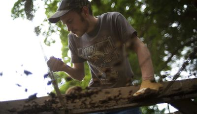 Brian Du Bois, a University of Southern Indiana archaeology student, searches for artifacts at the site of the old Harmonist Dormitory No. 1  in New Harmony, Ind., Thursday morning, May 29, 2014. (AP Photo/The Evansville Courier & Press, Denny Simmons)