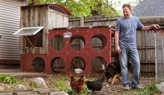 Des Moines resident Bill Callahan has chickens in his backyard. He built a chicken coop out of recycled/reclaimed materials using panels from a movie set, metal parts from his family's trampoline and fence boards that were blown down in a windstorm and an old window from his house.  (AP Photo/The Des Moines Register, Holly McQueen)