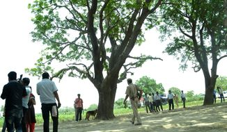 A police dog stands near the tree where two teenage girls were found hanging after they were gang raped in Katra village in the northern Indian state of Uttar Pradesh state, Saturday, May 31, 2014. (AP Photo/Rajeev Pal)