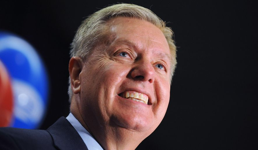 Sen. Lindsey Graham, R-S.C., speaks to supporters after winning the Republican primary, Tuesday, June 10, 2014, in Columbia, S.C. Graham defeated six tea party challengers. (AP Photo/Rainier Ehrhardt)