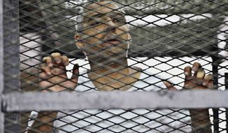 ** FILE ** In this Thursday, May 5, 2014, file photo, Mohammed Fahmy, Canadian-Egyptian acting bureau chief of Al-Jazeera, appears in a defendant's cage along with several other defendants during their trial on terror charges at a courtroom in Cairo, Egypt. (AP Photo/Hamada Elrasam, File)