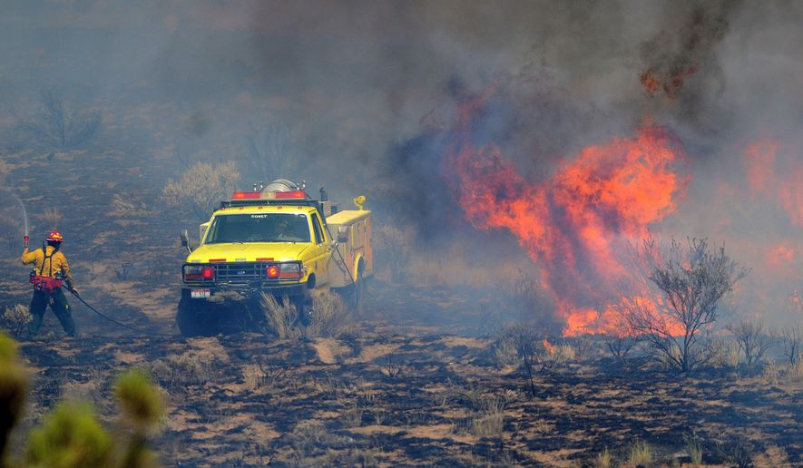 Bureau of Land Management firefighters work to extinguish a brush fire along U.S. Highway 26 at mile marker 188 near Dietrich, Idaho on Saturday, July 5, 2014. The fire that started Friday afternoon reached about 130 acres Saturday morning. (AP Photo/Times-News, Drew Nash)