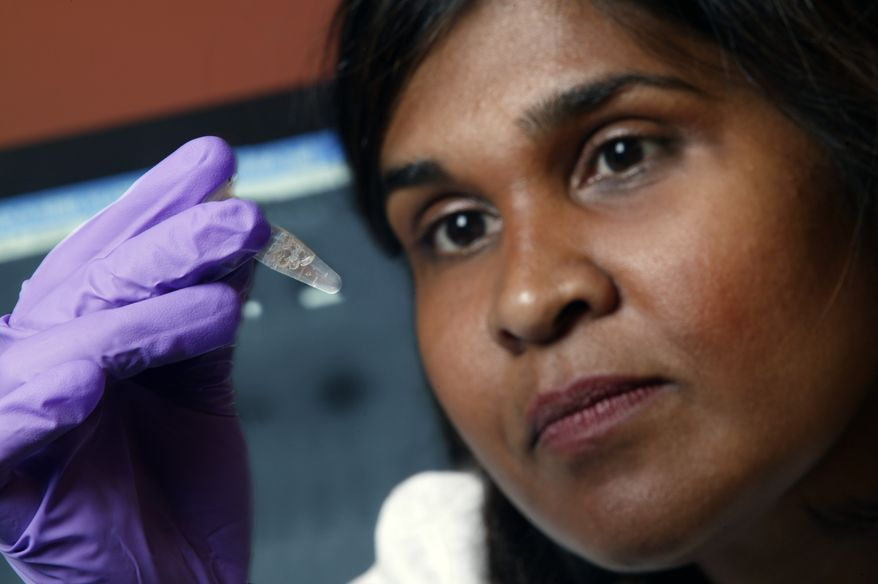 **FILE **  Dr. Deborah Persaud, a pediatric HIV expert at Johns Hopkins' Children's Center in Baltimore, holds a vial while at Johns Hopkins Medicine in 2005. (AP Photo/Johns Hopkins Medicine, File)