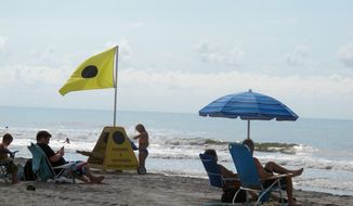 Vacationers enjoy the shore at Folly Beach, S.C., on July 1, 2014.  (AP Photo/Bruce Smith) **FILE**