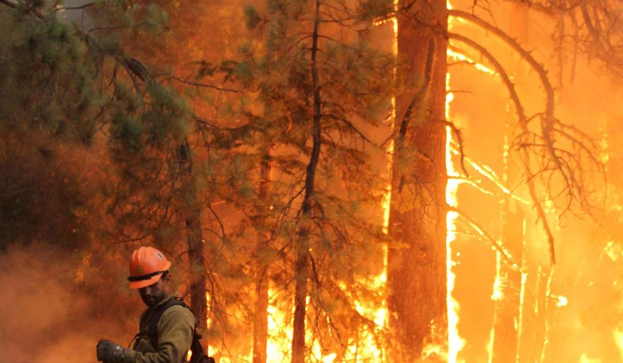 In thisMonday, Sept. 2, 2013 file photo provided by the U.S. Forest Service, firefighters stand watch near a controlled burn as they fight the Rim Fire near Yosemite National Park, Calif. The Northern California man charged with starting the largest wildfire in recorded history to sweep through the Sierra Nevada mountains has turned himself in to authorities. The U.S. Attorney's Office in Sacramento said Tuesday, Aug. 12, 2014, that Keith Matthew Emerald surrendered to U.S Marshals Service in Fresno. The 32-year-old is scheduled to appear in the afternoon in federal court for arraignment on a four-count indictment. (AP Photo/U.S. Forest Service, Mike McMillan)