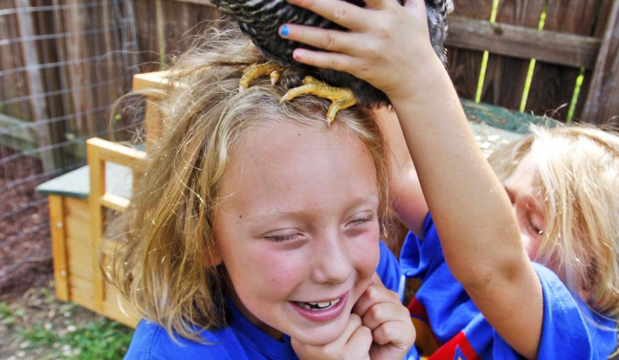 ADVANCE FOR MONDAY, AUG. 18 - Dana, 8, left, and Sarah, 5, Boyd play with one of the family's chickens in their backyard Thursday, Aug. 7, 2014, in Greenville, N.C. The girls' father, Lukas Boyd, was diagnosed with cancer last month. (AP Photo/The Daily Reflector, Aileen Devlin)