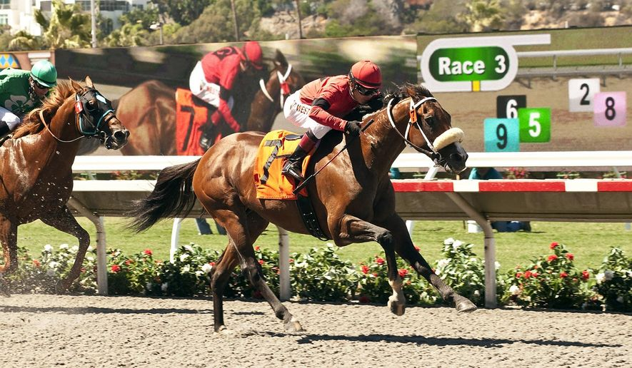 Jockey Tyler Baze scores career victory number 2,000 aboard Kate's Event in the third race Thursday, Aug. 14, 2014 at Del Mar race track in Del Mar, Calif. (AP Photo/Benoit Photo)