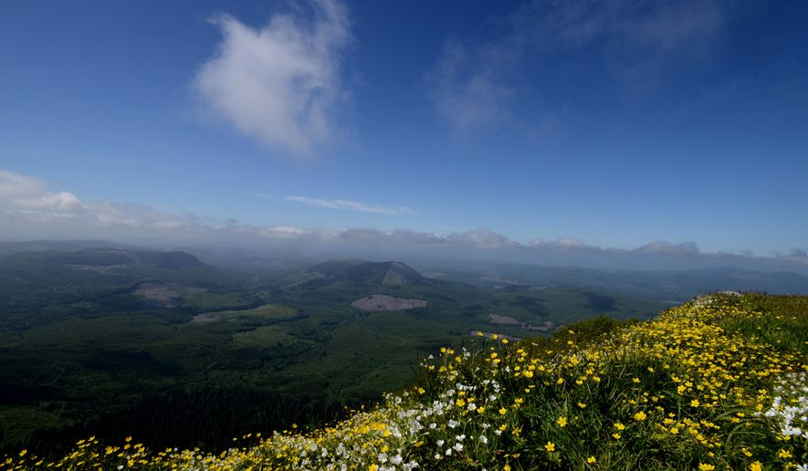 In this June 4, 2014 photo vibrant wildflowers color the summit of Saddle Mountain in the Oregon Coast Range. The 2.5-mile trail to the summit rises 1,600 feet in elevation. (AP Photo/Statesman-Journal, Danielle Peterson)