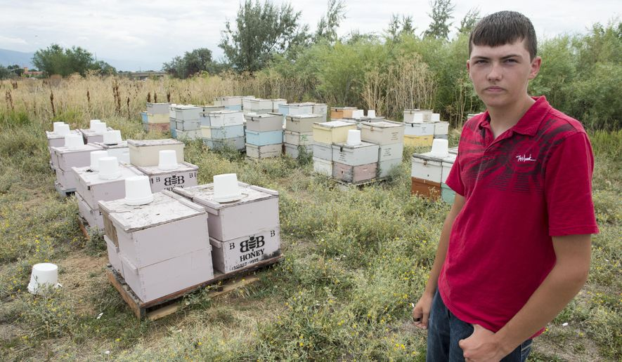 In this photo taken on Wednesday, Aug., 13, 2014, Bryce Bunderson, of Deweyville, poses with his hives that his bees were recently stolen from in Layton, Utah. (AP Photo/The Salt Lake Tribune, Rick Egan )  DESERET NEWS OUT; LOCAL TELEVISION OUT; MAGS OUT