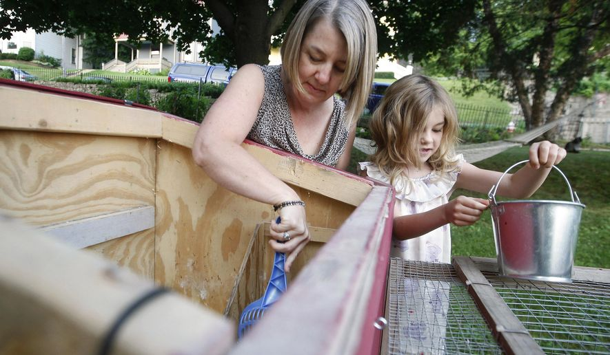 In this photo taken on Saturday, Aug. 9, 2014, Lena Olson, right, 7, helps her mom Chris Olson  clean the hen cage in the chicken coop outside their home  in Dubuque, Iowa. (AP Photo/The Telegraph Herald, Nicki Kohl) MAGS OUT, TV OUT