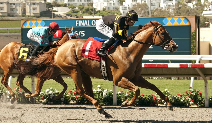 Wesley A. Ward's Judy the Beauty and jockey Mike Smith, right, outleg Madame Cactus with Joseph Talamo, left, to win the Grade III, $150,000 Rancho Bernardo Handicap, Sunday, Aug. 17, 2014 at Del Mar race track in Del Mar, Calif. (AP Photo/Benoit Photo)