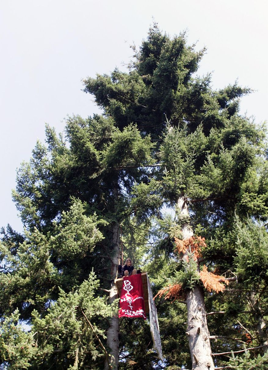 Protester Chiara D'Angelo fixes a banner hanging down from her platform in a tree off Highway 305 and High School Rd. in Bainbridge Island on Monday, Aug. 18, 2014. The tree she is in is one of 830 to be cut for the KeyBank/Visconsi Mall. (AP Photo/Kitsap Sun, Larry Steagall)