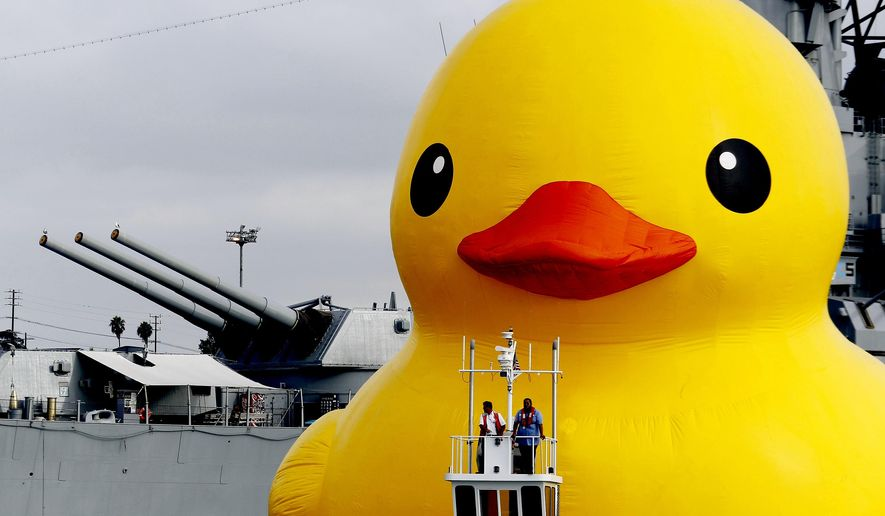 A giant inflatable rubber duck floats past the USS Iowa battleship at the Port of Los Angeles on Wednesday, Aug. 20, 2014. The world-famous sculpture sailed into the port for the first time Wednesday to kick off the Tall Ships Festival LA and will remain in the harbor through Sunday. The duck was designed by Dutch artist Florentijn Hofman and at 61 feet high, 110 feet long 85 feet wide is the largest rubber duck in the world. Hofman debuted the sculpture in 2007 and has since created several of them to sail around the world to places including China, Hong Kong and New Zealand. (AP Photo/Nick Ut )