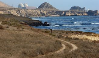 FILE - This Sept. 20, 2005, file photo, shows Pacific Gas and Electric's Diablo Canyon Nuclear Power Plant in Avila Beach, Calif. Michael Peck, a senior federal nuclear expert, is urging regulators to shut down California's last operating nuclear plant until they can determine whether the facility's twin reactors can withstand powerful shaking from any one of several nearby earthquake faults. Peck, who for five years was Diablo Canyon's lead on-site inspector, says in a 42-page, confidential report that the Nuclear Regulatory Commission is not applying the safety rules it set out for the plant's operation. (AP Photo/Michael A. Mariant, File)