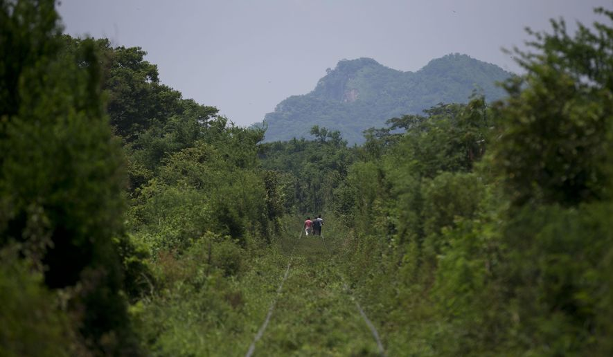 Central American migrants walk along overgrown train tracks several kilometers outside Arriaga in Chiapas state, Mexico, as they wait for a northbound freight train, Tuesday, Aug. 26, 2014. A Mexican federal official says the government plans to improve railway surveillance and increase the speed of northbound trains in hopes of deterring Central American migrants from riding on top of freight cars. (AP Photo/Rebecca Blackwell)