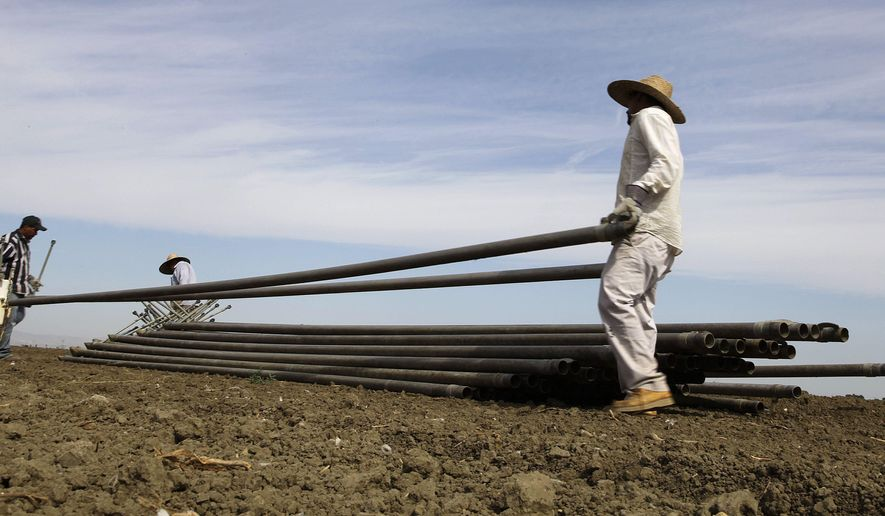FILE - In this June 25, 2013, file photo, workers move irrigation pipes from a field in the Westlands Water District near Five Points, Calif. Westlands and another water district have asked a federal judge to stop emergency releases of water from a Northern California reservoir to help salmon in the Klamath Basin survive the drought. The U.S. Bureau of Reclamation started releasing the extra water Saturday, Aug. 23. 2014. (AP Photo/Gosia Wozniacka,File)
