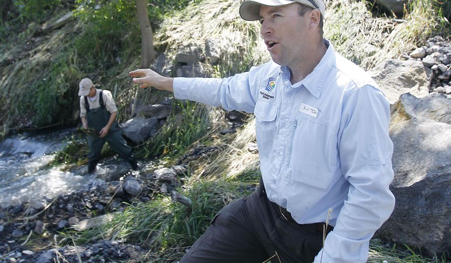 In this photo taken on Tuesday, Aug. 26, 2014, Twin Falls County Pest Abatement's Kirk Tubbs talks about block fly larva while Brian Simper looks for some in the background during Black Fly Field Day at Rock Creek Park in Twin Falls, Idaho. (AP Photo/The Times-News, Drew Nash) MANDATORY CREDIT
