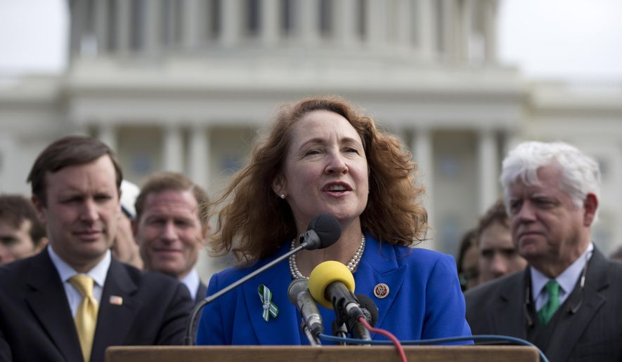 FILE - In this March 12, 2013 file photo, Rep. Elizabeth Esty, D-Conn., center, speaks during a news conference on Capitol Hill in Washington.  Connecticut's 5th congressional district election is once again expected to be one of the most expensive in the nation. Already, pro-Democrat outside groups have reserved $2.3 million in TV ad time to benefit  Esty, while her wealthy Republican opponent, Mark Greenberg, has already loaned his campaign more than $1 million. (AP Photo/Carolyn Kaster)