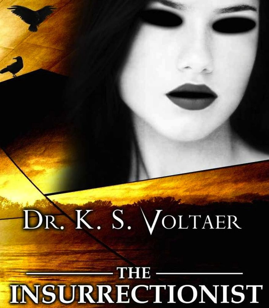 """Book cover for """"The Insurrectionist,"""" by Dr. K. S. Voltaer. (Amazon)"""