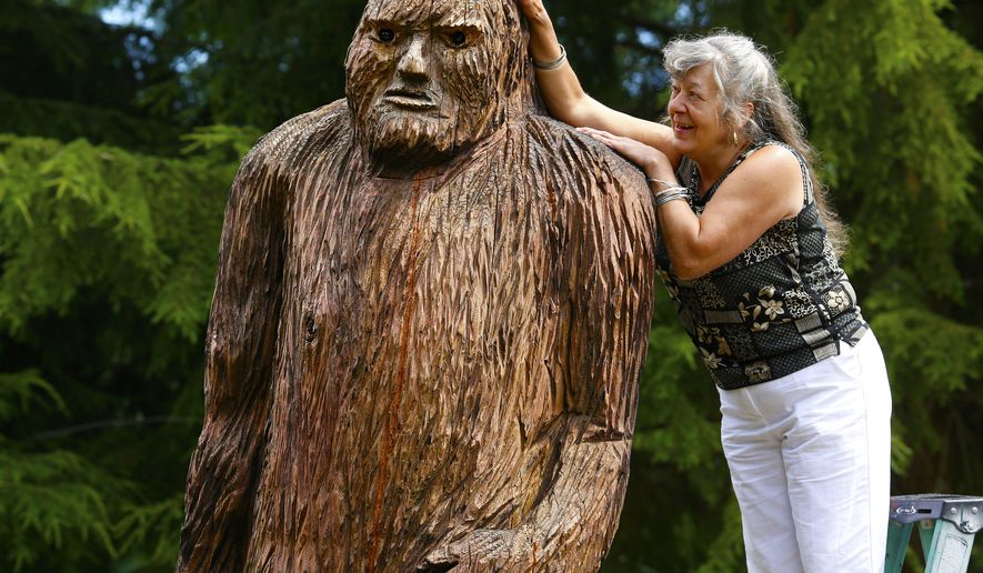 """Pearl Prihoda, official historian for Bigfootology, has a giant carved Sasquatch named Wowie in her Granite Falls, Wash., yard, on Aug. 5, 2014. The Washington region was a major contributor of hair samples to a study done at the University of Oxford, hairs thought to come from the elusive being. The results, revealed  in July, published in the prestigious Proceedings of the Royal Society B (""""B"""" for biological sciences) concluded that the hairs were from raccoons, horses, bears, cows, wolves _ not some unknown mammal. (AP Photo/The Seattle Times, Mark Harrison) (AP Photo/The Seattle Times, Mark Harrison) OUTS: SEATTLE OUT, USA TODAY OUT, MAGAZINES OUT, TELEVISION OUT, SALES OUT. MANDATORY CREDIT TO:  MARK HARRISON / THE SEATTLE TIMES."""