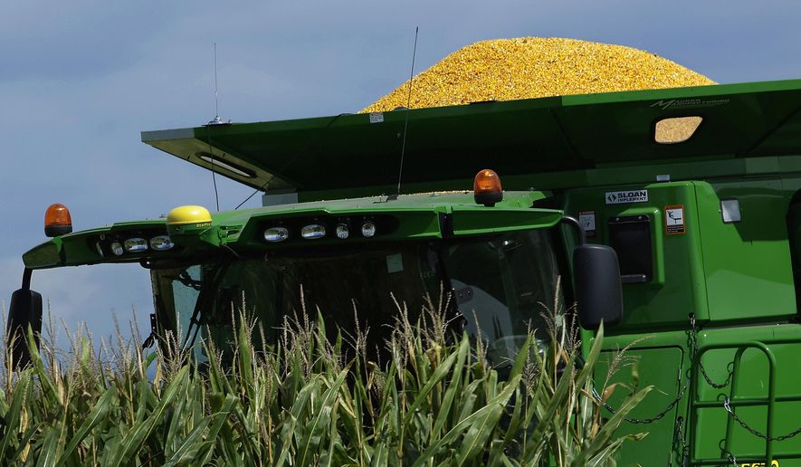 In this Monday, Sept. 1, 2014 photo, a central Illinois corn farmer begins to harvest this years crops of corn in Pleasant Plains, Ill. Wet, cool conditions across much of Illinois have put farmers behind schedule in bringing their corn in from the fields, according to the U.S. Department of Agriculture. (AP Photo/Seth Perlman)
