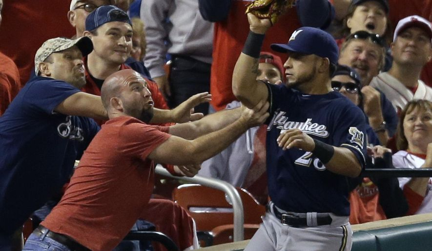 Milwaukee Brewers left fielder Gerardo Parra catches a ball in foul territory hit by St. Louis Cardinals' Matt Carpenter for an out while being grabbed by a fan during the third inning of a baseball game Tuesday, Sept. 16, 2014, in St. Louis. (AP Photo/Jeff Roberson)