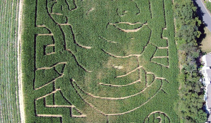 This Sept. 10, 2014, aerial drone photo provided by Seasoned Media depicts a corn maize honoring New York Yankees' Derek Jeter at a South Brunswick, N.J., farm. The VonThun Farm in central New Jersey, about 55 miles south of Yankee Stadium, carved a likeness of the Yankees captain and a thank you message to him into its five-acre corn maze. (AP Photo/Seasoned Media)