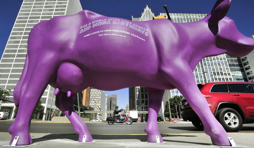 """This Sept. 14, 2014 photo shows a statue of a purple cow in Detroit.  Statues of purple cows around downtown Detroit are part of an effort to build awareness for cancer survivors and the American Cancer Society's Cattle Baron's Ball. The 13 life-sized cows are on display at locations including Hart Plaza and Campus Martius. The cows carry a message: """"For a World With Less Cancer and More Birthdays.""""  (AP Photo/Detroit News, Daniel Mears)  DETROIT FREE PRESS OUT; HUFFINGTON POST OUT"""