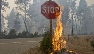 Fire burns near a 'Stop' sign  near Uncle Tom's Cabin in El Dorado County on Thursday,  Sept. 18, 2014. The King fire has burned over 70,000 acres. The wind-whipped fire burned through 114 square miles and was 10 percent contained, according to California Department of Forestry and Fire Protection. (AP Photo/The Sacramento Bee, Randall Benton)