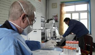 This undated handout provided by the Eugene Bell Foundation (EBF) shows John Rogers, executive director of the Eugene Bell Foundation, left, and a and EBF volunteer analyze test results for tuberculosis patients in a TB treatment center in Sonchon, North Korea. Despite worsening U.S.-North Korean relations, an American charity is ramping up efforts against an epidemic of multidrug-resistant tuberculosis in the isolated country, where it says it is making inroads in fighting the deadly disease. The Eugene Bell Foundation travels to North Korea twice-a-year, bringing high-end equipment and drugs to treat patients at old-world sanatoria that house sufferers of TB that has spread among a population weakened by malnutrition since a famine in the 1990s. The foundation goes again this month, on a whirlwind, three-week mission to help hundreds of patients.(AP Photo/Eugene Bell Foundation)  **FILE**