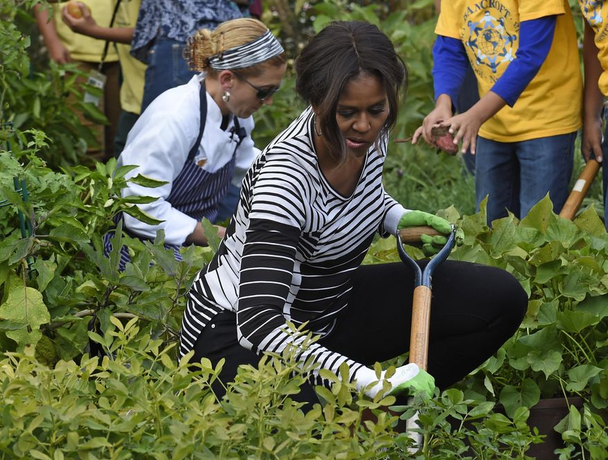 First lady Michelle Obama is joined by school children as they harvest peanuts in the annual fall harvest of the White House Kitchen Garden at the White House in Washington, Tuesday, Oct. 14, 2014. (AP Photo/Susan Walsh) ** FILE **
