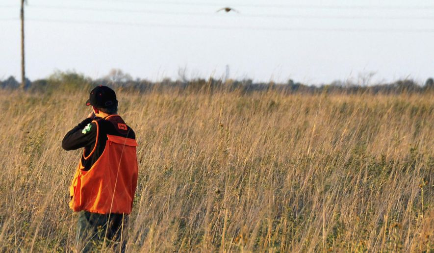 FILE - In this Oct. 7, 2012 file photo, 14-year-old Collin Cleveland, of Montrose, S.D., takes aim at a pheasant during the state's annual youth hunt on land near Tyndall, S.D. Higher bird numbers and a friendly weather forecast have pheasant hunters looking forward to the season's traditional opener on Saturday, Oct. 18, 2014. (AP Photo/Dirk Lammers, File)