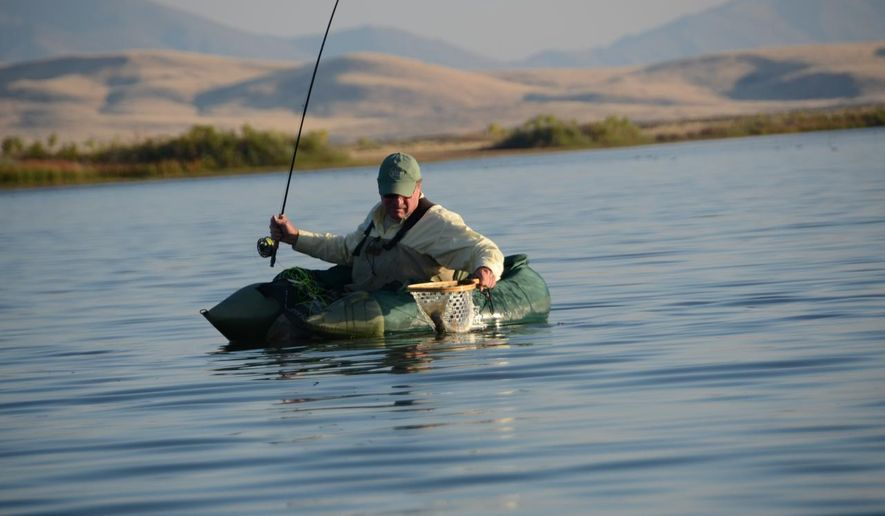 ADVANCE FOR WEEKEND EDITIONS, OCT 18-19 - In this photo taken on Oct. 9, 2014, Jerry Nielsen, of Boise, Idaho, lands a trout from Lake Billy Shaw at the Duck Valley Indian Reservation on the Idaho/Nevada border.  It's tempting to put fishing rods away during fall and grab guns, but fishing in Southwest Idaho is too good to ignore. (AP Photo/Idaho Statesman, Roger Phillips) LOCAL TELEVISION OUT (KTVB 7); MANDATORY CREDIT