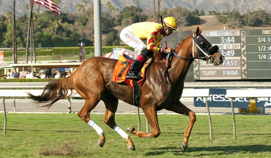 In this photo provided by Benoit Photo, Red Outlaw and jockey Edwin Maldonado win the $75,000 Uniformity Stakes, Sunday, Oct. 19, 2014 at Santa Anita Park, Arcadia, Calif. (AP Photo/Benoit Photo)