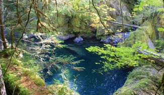 ADVANCE FOR WEEKEND EDITIONS, OCT. 25-26 - This this photo taken on Oct. 7, 2014 shows a scenic swimming hole along the Middle Santiam River by hiking the Chimney Peak Trail 3382 about 0.7 mile to the area near Shedd Camp Shelter, near Detroit, Ore. (AP Photo/Statesman-Journal, Zach Urness)
