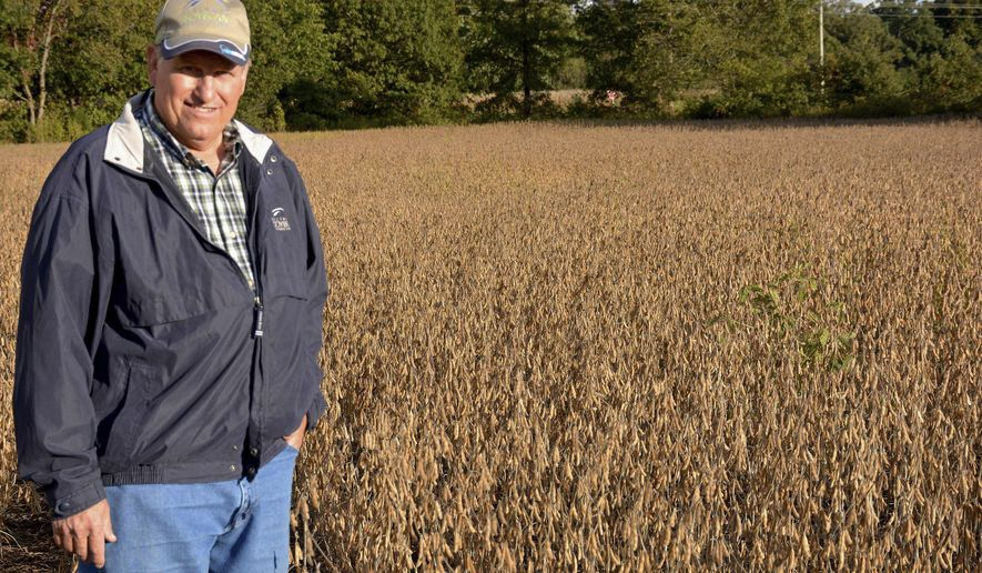 In this Oct. 6, 2014 photo, farmer Gary Berg poses in his soybean field in St. Elmo, Ill.  Berg's experience with soybeans has taken him far beyond his farm in St. Elmo. Berg was recently one of three farmers in the state chosen to help lead the American Soybean Association's World Initiative for Soy in Human Health (WISHH). Berg spent nearly a year visiting Nicaragua and Guatemala to help build up soy farming, both as a source of protein and to strengthen the counties' agricultural economies. (AP Photo/Effingham Daily News, Bill Grimes)